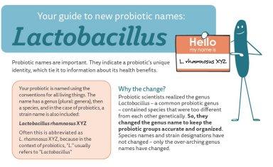 Probióticos ajudam a controlar obesidade juvenil