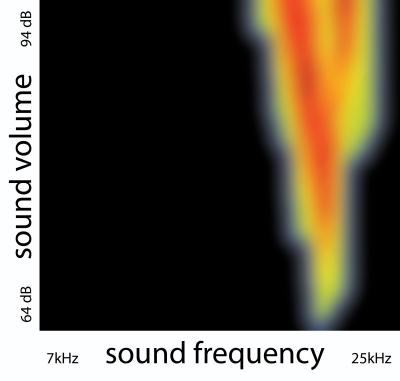 Descobertos neurônios que explicam por que você deve cantar para seu bebê