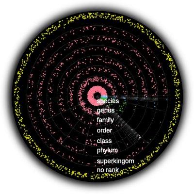 Diferentes teorias sobre microbioma humano levam a diferentes terapias