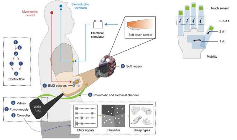 Mão robótica flexível oferece controle tátil