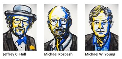 Nobel de Medicina 2017 premia descoberta do relógio biológico