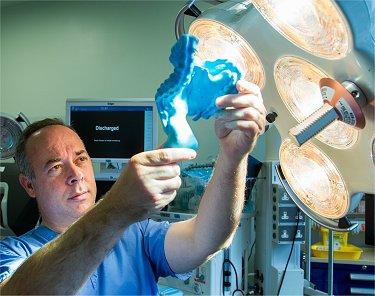 Cinco órgãos do nosso corpo descobertos nos últimos cinco anos