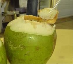 Água de coco supera isotônicos como bebida esportiva