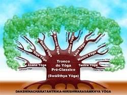 http://www.diariodasaude.com.br/news/imgs/arvore-do-yoga.jpg