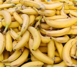Proteína da banana evita transmissão sexual do HIV