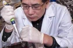 Remédio para emagrecer pode intoxicar e alterar efeitos de outros medicamentos