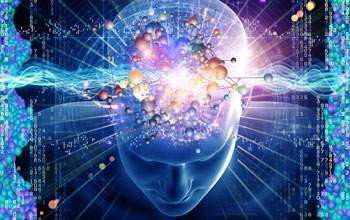 O cérebro humano, esse ilustre desconhecido