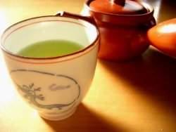 Mel, cerveja e chá para combater bactérias