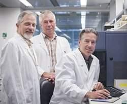 Nosso sistema imunológico mata um câncer por dia