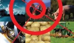 Conferência mundial discutirá segurança dos alimentos geneticamente modificados