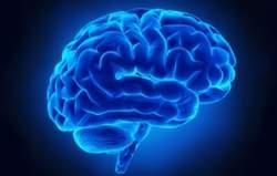 Exame detecta autismo pela atividade cerebral