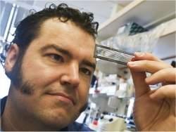 Estudo genético revela complexidade do autismo