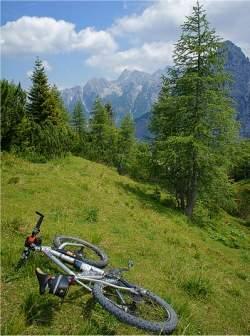 O que é melhor: Andar, correr ou andar de bicicleta?