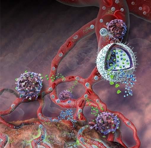 Nanotecnologia ataca câncer e reforça imunidade ao mesmo tempo
