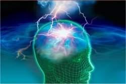 Cérebro possui estações de rádio transmitindo em várias frequências