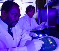 Luz como medicamento? Cientistas começam a ceder às evidências
